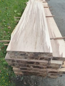 Stacked of milled Beech timber